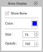 Bone Display
