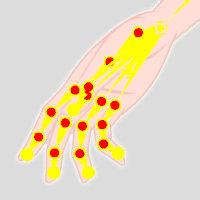 Bone Hand