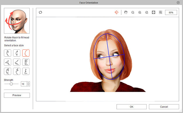 Face Orientation and Style